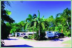 Tropical Hibiscus Caravan Park - Surfers Gold Coast