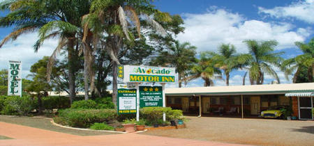 Avocado Motor Inn - Surfers Gold Coast