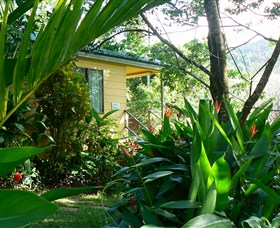 Daintree Valley Haven - Surfers Paradise Gold Coast
