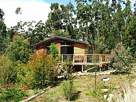 Southern Forest Accommodation - Surfers Gold Coast