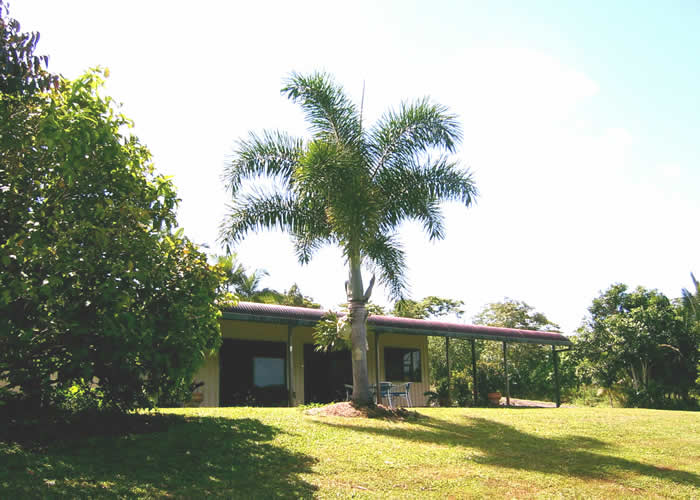 Daintree Mountain View Retreat and Vanilla Beans