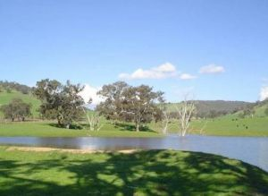 Hillview Farmstay - Surfers Gold Coast