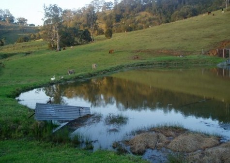 Barkeldine Farm Country Retreat - Surfers Gold Coast