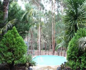 Fern Gulley Retreat - Surfers Gold Coast