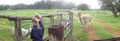 Boronia Farm Farmstay - Surfers Gold Coast