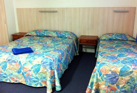 Mango Tree Motel - Surfers Gold Coast