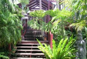 Maleny Tropical Retreat - Surfers Gold Coast