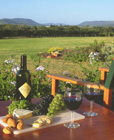 Tranquil Vale Vineyard Cottages - Surfers Paradise Gold Coast