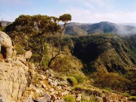 Bendleby Ranges - Surfers Gold Coast