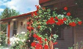 Rose Cottage Bed And Breakfast - Surfers Paradise Gold Coast
