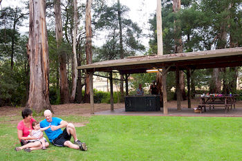 BIG4 Yarra Valley Holiday Park - Surfers Gold Coast