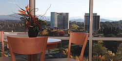 Waldorf Apartment Hotel Canberra - Surfers Gold Coast