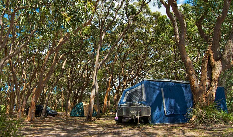 Stewart and Lloyds campground - Surfers Paradise Gold Coast