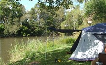 Williams River Holiday Park - Surfers Paradise Gold Coast
