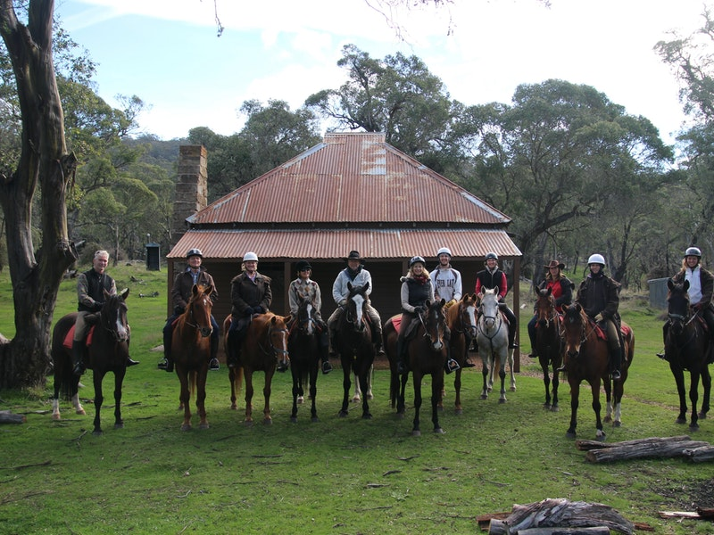 Reynella Homestead and Horseback Rides - Surfers Paradise Gold Coast