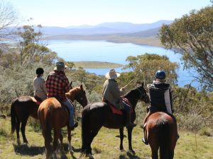 Reynella Homestead and Horseback Rides - Surfers Gold Coast