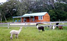 Moorallie Cottage Farm Stay - Surfers Gold Coast