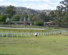 Kellarni Downs Farmstay-Scenic Rim - Surfers Gold Coast