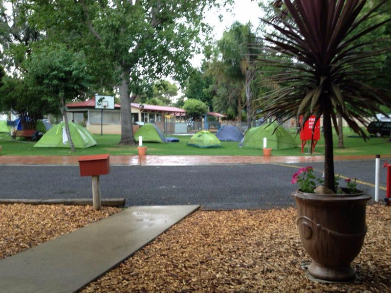 Young Caravan Tourist Park - Surfers Paradise Gold Coast