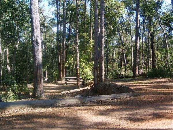 Barrabup Camp at St John Brook National Park - Surfers Gold Coast