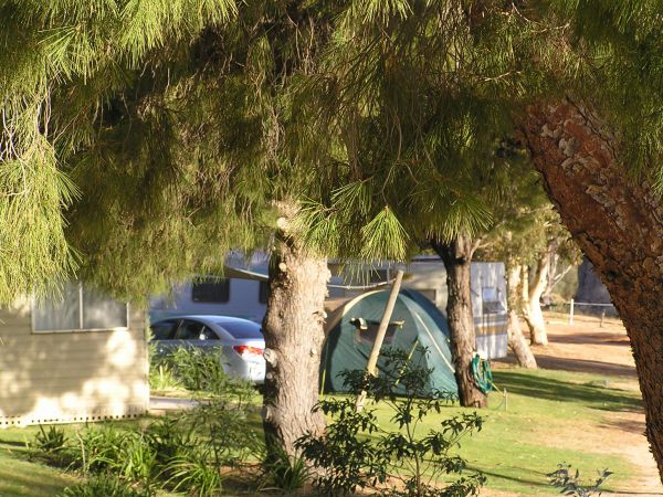 Barmera North Lake Caravan Park - Surfers Gold Coast