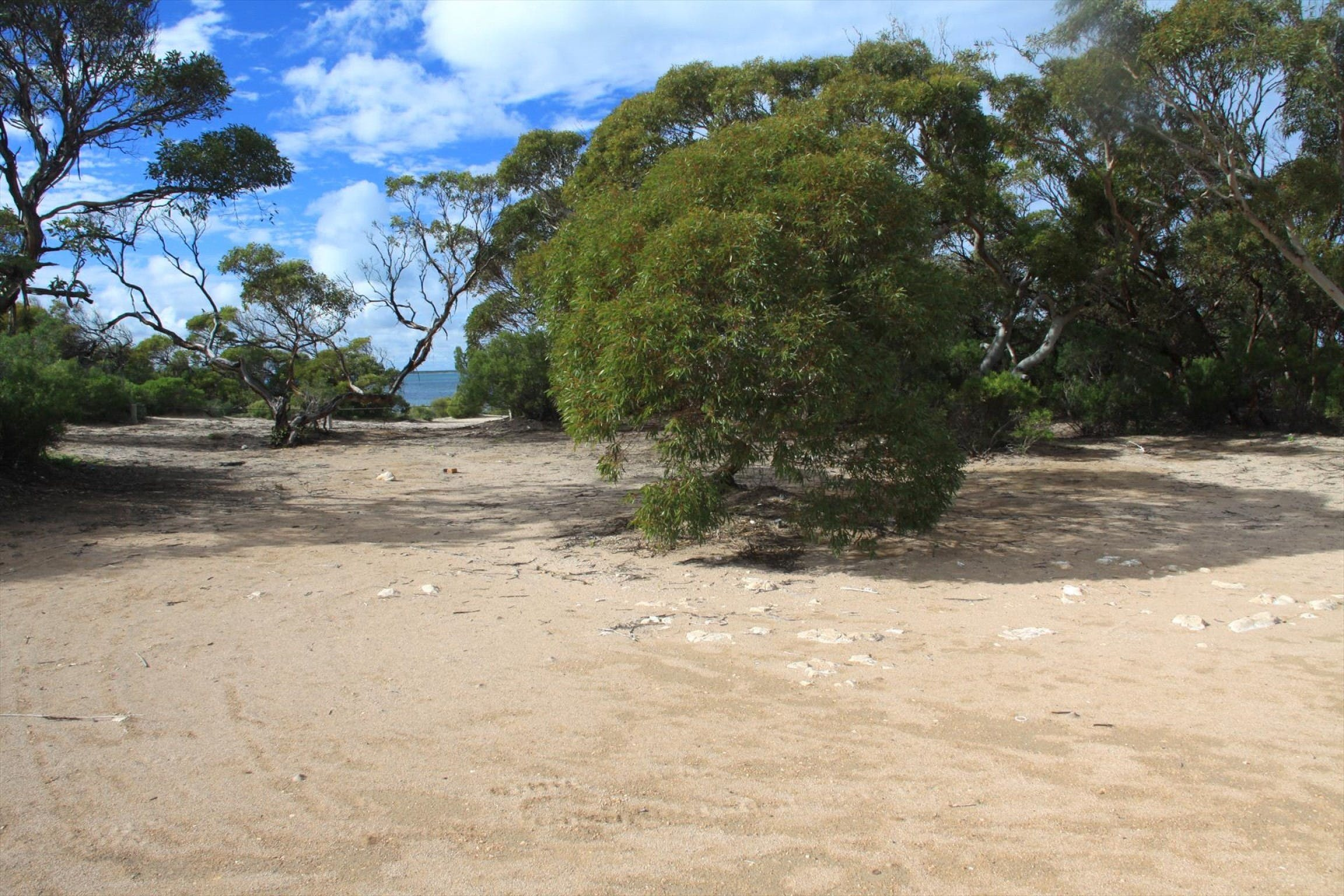 Acraman Creek Conservation Park Campgrounds - Surfers Gold Coast