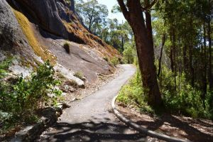 Centre Road Crossing Camp at Mount Frankland South National Park - Surfers Gold Coast
