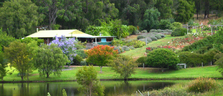 Pemberton Lavender and Berry Farm Cafe and Cottages - Surfers Gold Coast