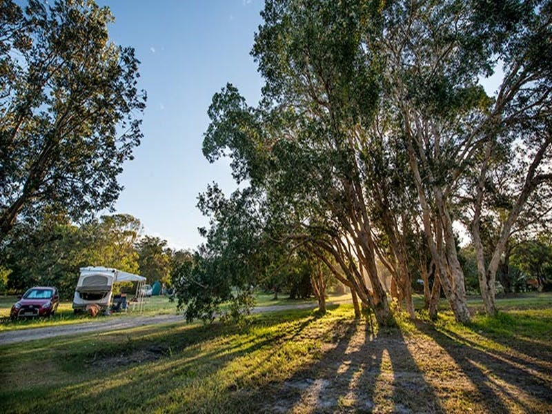 Delicate campground - Surfers Gold Coast