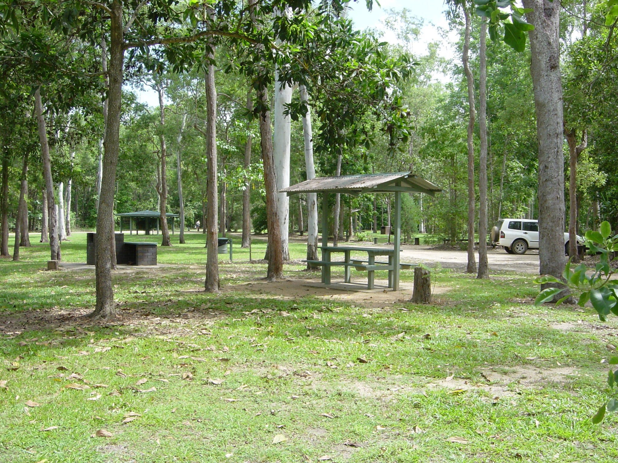 Broadwater camping area Abergowrie State Forest - Surfers Gold Coast