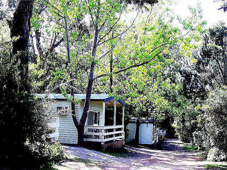 Flinders Caravan Park - Surfers Gold Coast