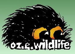 OZe Wildlife - Surfers Gold Coast