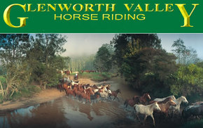 Glenworth Valley Horseriding - Surfers Gold Coast