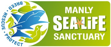 Manly SEA LIFE Sanctuary - Surfers Gold Coast