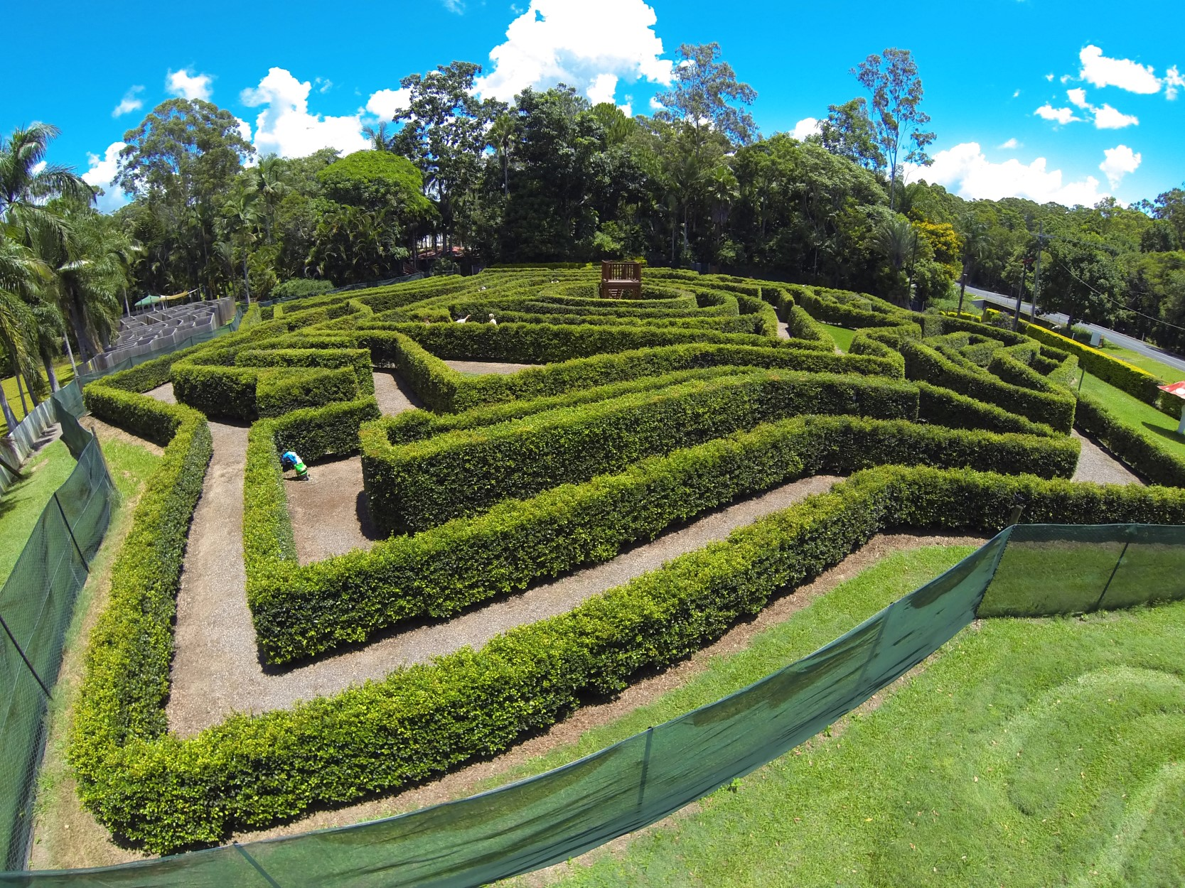 Bellingham Maze - Surfers Gold Coast
