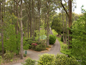 Mount Lofty Botanic Garden - Surfers Gold Coast