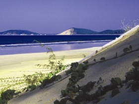 Cooloola Great Sandy National Park - Surfers Gold Coast