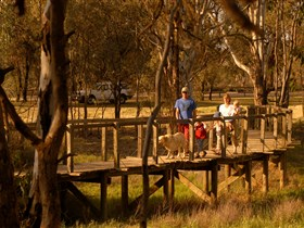 Loxton's Drives Walks and Trails - Surfers Gold Coast