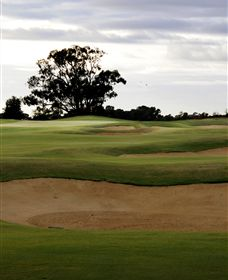 Black Bull Golf Club - Surfers Gold Coast