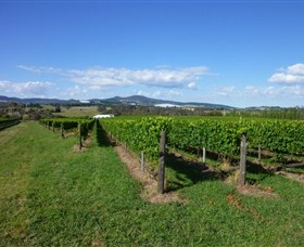 Hedberg Hill Wines - Surfers Gold Coast