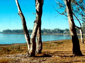 Lake Broadwater Conservation Park - Surfers Gold Coast