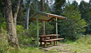 Devils Hole lookout walk and picnic area - Surfers Gold Coast