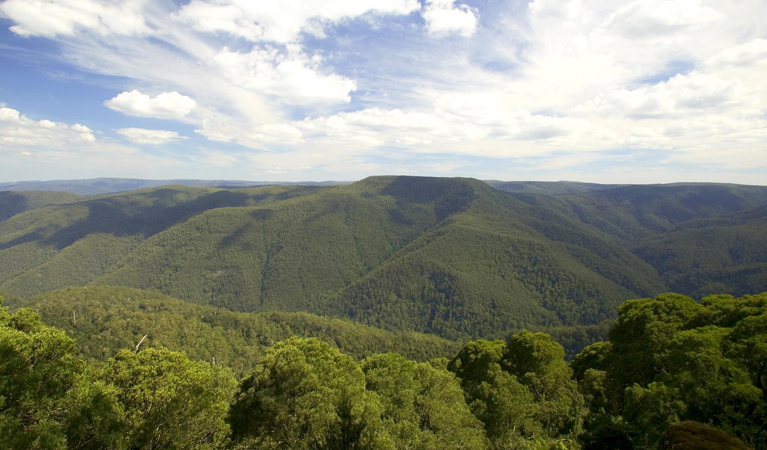Barrington Tops National Park - Surfers Paradise Gold Coast
