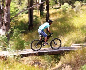 The Steps Mountain Bike Park - Surfers Gold Coast