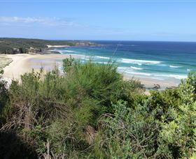 South Pacific Heathland Reserve - Surfers Gold Coast