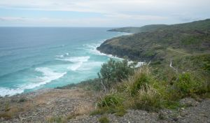 Korogoro walking track - Surfers Gold Coast
