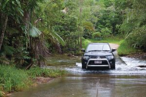 The Pioneer Valley and Eungella National Park - Surfers Gold Coast