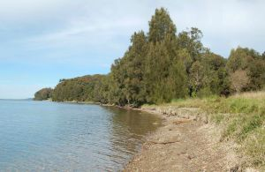 Lake Macquarie State Conservation Area - Surfers Gold Coast