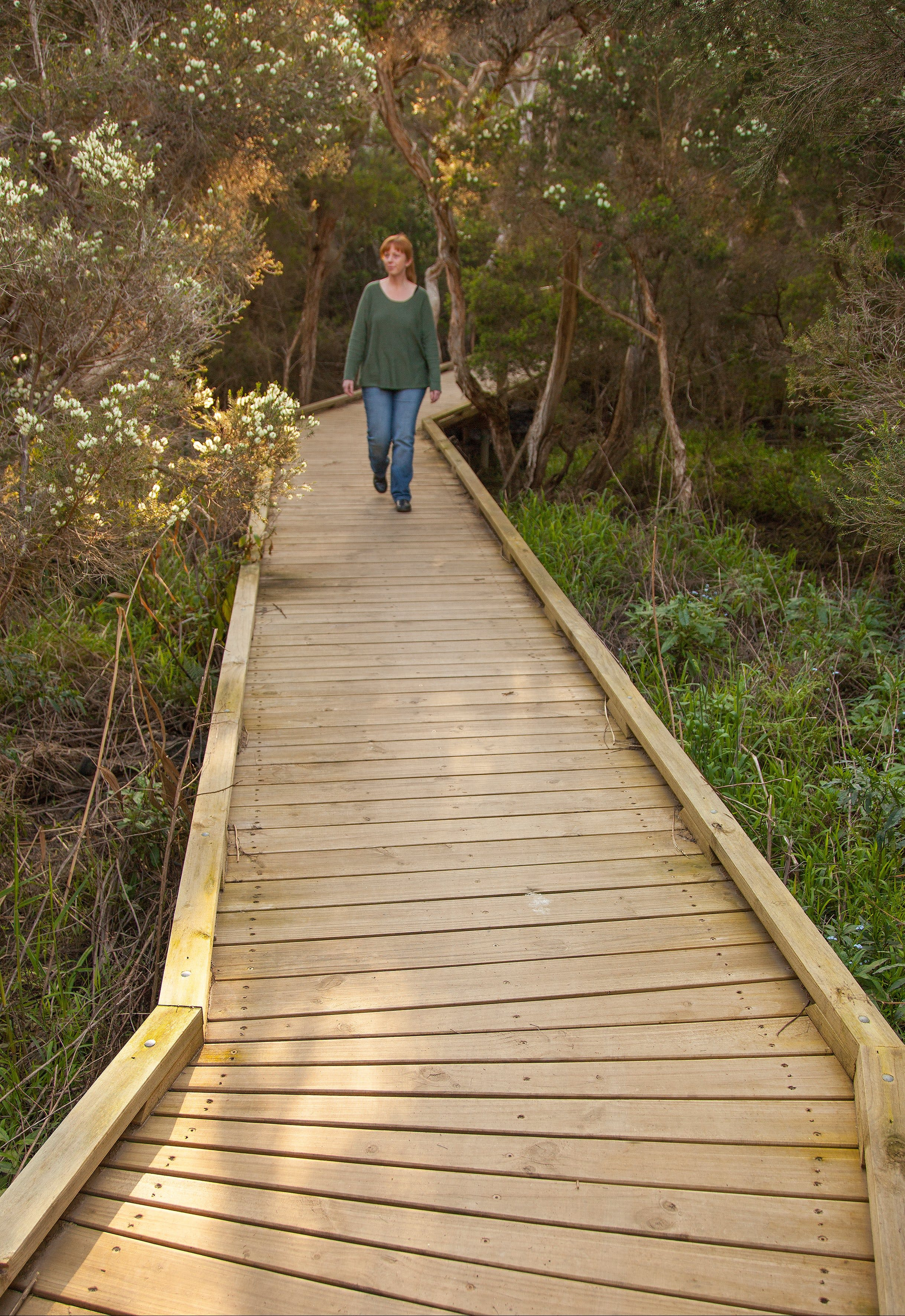 Balcombe Creek Estuary Boardwalk - Surfers Gold Coast