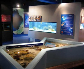 Marine and Freshwater Discovery Centre - Surfers Gold Coast